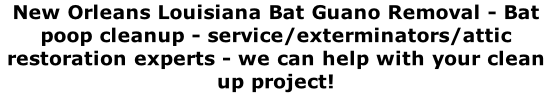 New Orleans Louisiana Bat Guano Removal - Bat poop cleanup - service/exterminators/attic restoration experts - we can help with your clean up project!