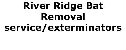 River Ridge Bat Removal service/exterminators